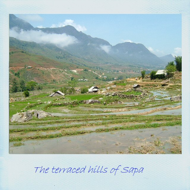 The terraced hills of Sapa, Vietnam